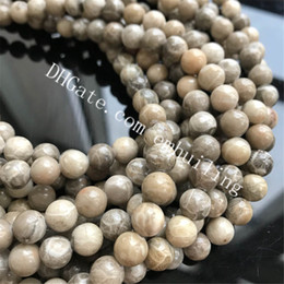 Coral Gemstone Beads Australia - 10 Strands 6mm 8mm Natural Chrysanthemum Coral Fossil Jade Stone Beads Genuine Fossilized Coral Jasper Gemstone Loose Beads Round Smooth