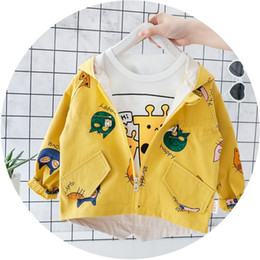 $enCountryForm.capitalKeyWord Australia - Boys jackets autumn spring kids girl hooded coat flower embroidery children outerwear clothing for little girl outfits