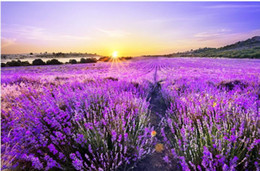 stereo painting Australia - Custom Photo Wallpaper 3D Stereo Beautiful romantic purple lavender field golden sun background wall Living Room Wallpaper 3D Painting