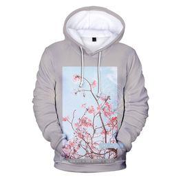 edf14699 Fashion 2019 Hot Shawn Mendes 3D Hoodies Men women New Style Harajuku Hip  Hop 3D Print Shawn Mendes Men's Hoodies Sweatshirt
