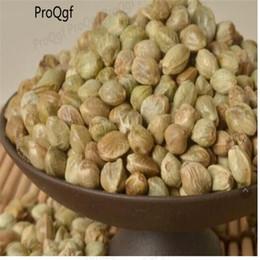 green tea packs 2019 - 200gram bonsai drying green tea discount green tea packs