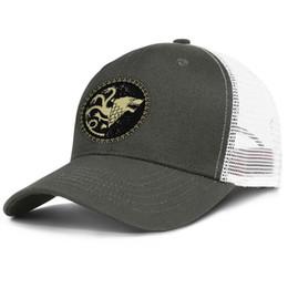 $enCountryForm.capitalKeyWord Australia - Fashion Mesh Baseball hat Men Women-Game of Thrones Game of Thrones Stark designer caps snapback Adjustable Golf hats Outdoor