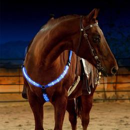 Großhandel Outdoor Horse Brustplatte Dual LED Pferdegeschirr Nylon Nacht Sichtbare Reitausrüstung Racing Equitation Cheval Gürtel