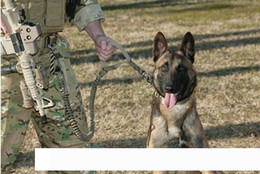 snap straps Australia - US Army Tactical Quick Release Heavy Duty Panic Snap Adjustable rope strap Leashes Dog training Leads belt 1000D Nylon camo