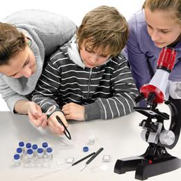 Toptan satış Çocuklar Mikroskop Oyuncak Kiti Lab LED 100X-1200X Ev Eğitim Mikroskop Oyuncak Erken Öğrenme Biyolojik Oyuncaklar Çocuklar Için
