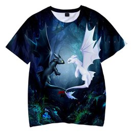 $enCountryForm.capitalKeyWord NZ - How To Train Your Dragon T Shirts For Boys Girls Summer 3d Cartoon Print Polyester Short Sleeve Breathable Tshirt Tops 8 10 12y Y19051003