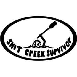 cool window stickers UK - 16*9.3cm Sh*t Creek Survivor Home Decor Car Truck Window Decal Sticker Cool Graphics Funny Personality car Stickers