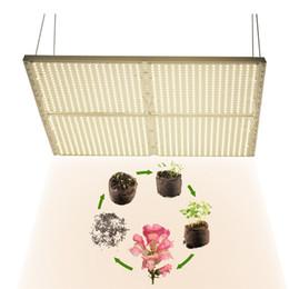 Indoor Growing Kits Australia | New Featured Indoor Growing Kits at