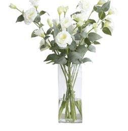 Discount bamboo vases - Flower decoration dish arrangement flower decoration transparent cylindrical rich bamboo glass vase