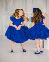 $enCountryForm.capitalKeyWord Australia - Royal Blue tutu Skirt Flower Girls Dreses for Wedding With Jewel NEck Knee Length Tulle Girls Pageant Dresses