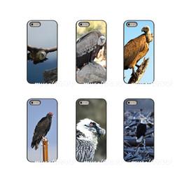 $enCountryForm.capitalKeyWord Australia - Vulture Hard Phone Case Cover For Samsung Galaxy Note 3 4 5 8 S2 S3 S4 S5 MINI S6 S7 edge S8 S9 Plus