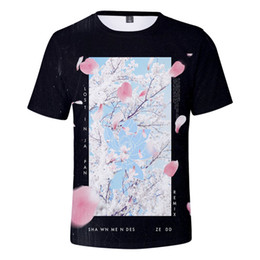 Pop Tees Australia - 3D Shawn Mendes DJ Singer T Shirt Women Men Harajuku Streetwear Tee Shirt Sweat Hip Pop Tops