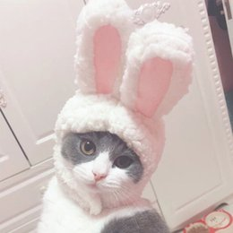 Wholesale white rabbit cosplay for sale – halloween 2019 Estrella Cat Rabbit Apparel Party Cosplay Suit Lovely Fashion Pretty Hat Rabbits Ears Shape Hat for Cats Kittens