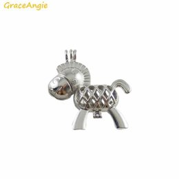diy charm locket NZ - GraceAngie 2PCS Bright Silver Color Baby Horse Cute Animal Bead Cage Locket Zinc Alloy Pendant Charm DIY Diffuser Necklace