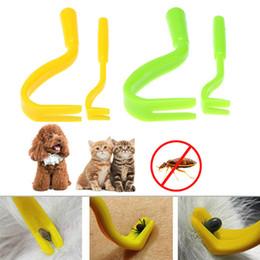 $enCountryForm.capitalKeyWord Australia - 2Pcs set Plastic Tick Twister Hook Flea Remover Hook Human Cat Dog Pet Supplies Tick Remover Tool Pet Supplies D19011506