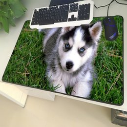 large table mats NZ - XGZ Animal Large Size Mouse Pad Lock Side Sled Dog Cute Blue Eyes Husky Pattern Laptop PC Table Mat Rubber Universal Non-slip