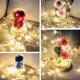 $enCountryForm.capitalKeyWord NZ - 4 Colors glass cover rose decoration LED night light birthday party decoration lamp holiday gift LED Rose Flower Novelty Item T8I061