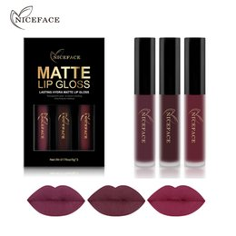 $enCountryForm.capitalKeyWord NZ - NICEFACE 3PCS Liquid Lipstick Set Long-Lasting Matte Lip Stick Make Up Waterproof Velvet Batom Nude Sexy Lip Gloss Cosmetics Kit Free Ship