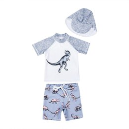 ccd60b1aa7 New Summer Kids Boy Dinosaur Swimsuit Beachwear Tops Shorts Hat 3PCS Bathing  Suit for