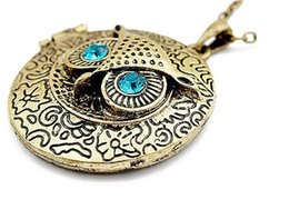 photo locket man NZ - Owl Expanding Photo Locket Necklace Nighthawk Gothic Photo Box Collar Openable Necklaces Pendant For Men Women Jewelry Gift Souvenir