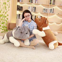 Girlfriends Gift Cat Australia - Dorimytrader cute Shar Pei plush toy giant animal dog doll rag doll shapi dog doll sleeping pillow girlfriend gift 39inch 100cm DY50591