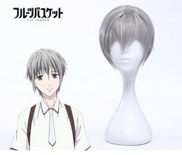 $enCountryForm.capitalKeyWord Australia - Details about 2019 Spring Anime Fruits Basket Souma Yuki Cosplay Wigs Men's Short Grey Wigs