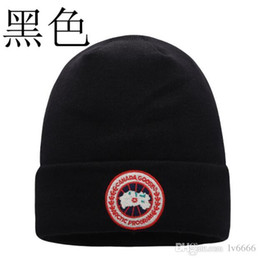 Chinese  S New winter knitting wool hat winter outdoor sports men and women embroidery warm cap sleeve head cap manufacturers