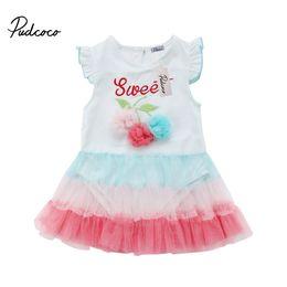 NewborN tutu size online shopping - Pudcoco Summer Newborn Baby Girls Lace Flower Romper Dress Jumpsuits Outfits Tutu Clothes Size M