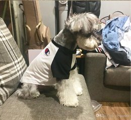 $enCountryForm.capitalKeyWord Australia - High Quality Dog Summer T Shirt Tide Brand Cute Teddy Puppy Schnauzer Apparel Casual Cute Small Dog Hip Hop Clothing Free Shipping