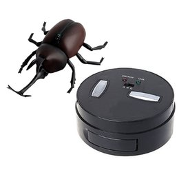 base c Canada - Infrared Remote Control Simulation Beetle Mini Rc Animal Kids Child Toy Boy Gift