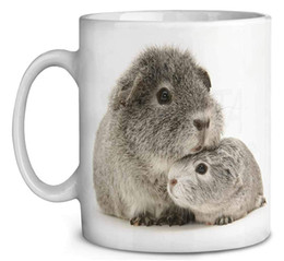 porcelain gift ideas Australia - Two Silver Guinea Pigs Coffee Tea Mug Christmas Stocking Filler Gift Idea