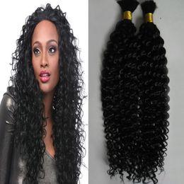 $enCountryForm.capitalKeyWord Australia - 2 Bundles Brazilian Kinky Curly Bundles Human Braiding Hair Bulk 200g No Weft Human Hair Bundles Peruvian Hair