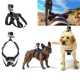 $enCountryForm.capitalKeyWord Australia - Dog Belt Harness Strap Mount for Most Action Cameras Compatible for 899