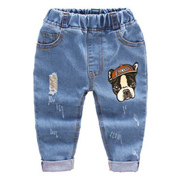 $enCountryForm.capitalKeyWord Australia - 2018 Fashion Children Boys Cartoon Trousers Pant Baby Girls Grinding Holes Jeans Kids Spring Autumn Clothes 2-6years J190522