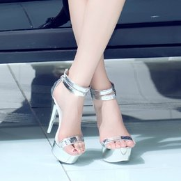 06f206d091d Hot 2018 Summer New High Heel 15CM Peep Toe Nightclub Sandals Women Shoes  Waterproof 5CM Steel Tube Dancing Shoes Women Silver