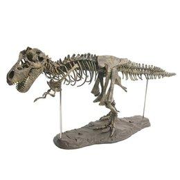 Toys & Hobbies Dinosaur Rapator Animal Skull Model Fashion Men Biker Punk Creative Action Figure Toys Skeleton Collection Bedroom Ornaments