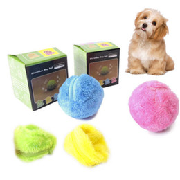 Chinese  Practical Dog Magic Roller Ball Toy New Fashionable Nontoxic Safe Automatic Roller Ball Magic Dog Cat Pet Interactive Toy manufacturers