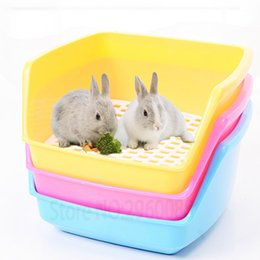 $enCountryForm.capitalKeyWord NZ - Hot Sell Products Free Toilet Plastic Heightening Guinea Pig Accessories Potty Rabbit Pet Supplies Q190606