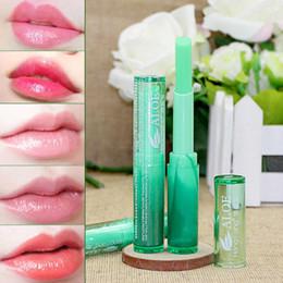 Lipstick Plant Australia - Hot Winter Protect Lip Moisturizer Nutritious Lipbalm Makeup Aloe Vera Plant Lipstick Women Temperature Chang Color Lip Stick