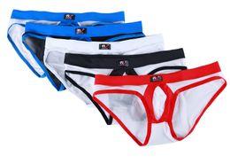 Lingerie prices online shopping - 1003 SJ Wangjiang panties briefs best mens underwear knickers boxers lingerie Nylon spandex low price