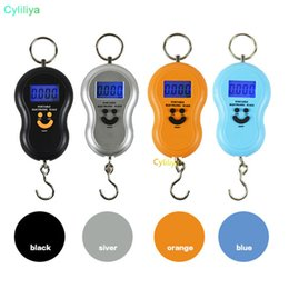 China Special offer authentic portable portable hoist hook scale express said gourd scale electronic said manufacturers 50kg suppliers