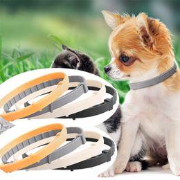 Großhandel Hund Katze Preventic Tick Collar Anti Floh Zecke Hundehalsband Silikon-Halsband verstellbar Sommer Home Tierzubehör werden und sandig drop ship