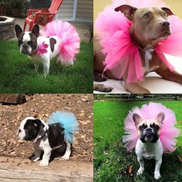$enCountryForm.capitalKeyWord Australia - Hot NEW Summer Dog Tutu Skirt Princess Pet Cat Dress Soft Tulle Cosplay Bulldog Dress for Small Pet 5 Color DROPSHIPPING