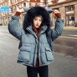 $enCountryForm.capitalKeyWord Australia - Winter Real Raccoon Fur Collar 90% White Duck Down Parkas Women Loose Hooded Thick Short Jackets Female Warm Snow Down Coat