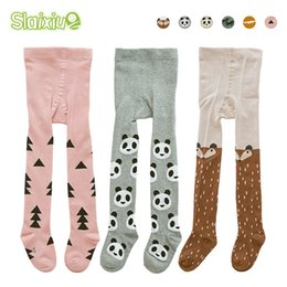 $enCountryForm.capitalKeyWord Australia - 3pcs lot Kids Toddler Tights Kawaii Boys Girls Tights Soft Cotton Baby Children Stocking Pantyhose Infants Clothing For 1-3 Y J190523