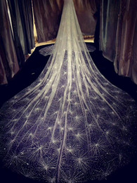 Hair Netting Wedding Australia - vintage 2019 Sparkling Golden Wedding Veils 3M Long Wedding Bridal Hair Accessories Wedding Accessories Bridesmaid Veils Bridal Accessories
