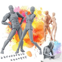 movable joints action figure NZ - Figma He She Movable Joint Action Figure Toy Artist Painting Anime Model Mannequin Art Sketch Draw Human Body Doll C19041501