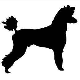 Cartoon Tail UK - Sticker Car Decal JDM - Poodle dog breed Cute And Interesting Fashion Sticker Decals Vinyl Car Wrap
