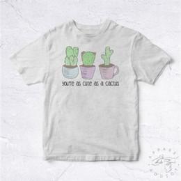 Blue Cactus Plant Online Shopping | Blue Cactus Plant for Sale