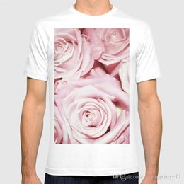 $enCountryForm.capitalKeyWord Australia - Beautiful bed of pink roses- Floral Rose Flowers